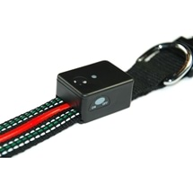 Dog Collar with LED Light