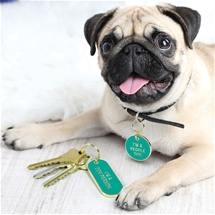 Keychain & Pet Tag Set